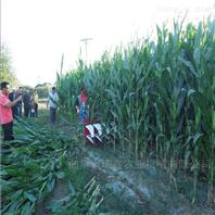 养殖用玉米草收割机
