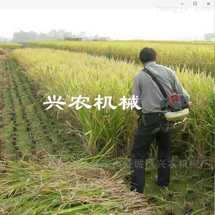 草坪修剪车割草机 二冲程水稻草坪锄草机