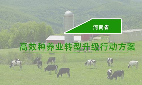 河南省出台高效种养业转型升级三年行动方案