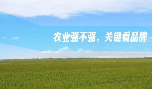 如何做到品牌农业强国?