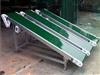 济宁专业铝型材皮带输送机防爆电机 日用化