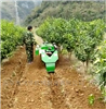 RH-KGJ果园自走式多功能开沟机冬季苗圃施肥回填机