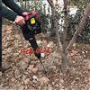 铲式断根挖树机 起苗机厂家